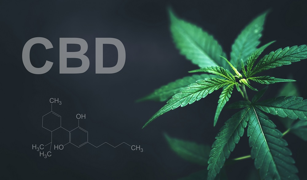 High-Quality CBD Oil